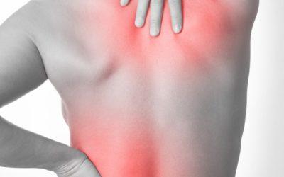 Le CBD Pour Lutter Contre Les Douleurs Du Dos ? Analyse